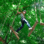 foret acrobates